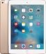 iPad Air 2 Wi-Fi+Cell 32GB  (Apple Sim)_1