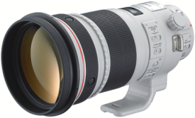 Canon EF 300mm 4.0 L IS USM