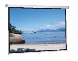 WS-P Classic-Screen-Rollo 16:9 168x95cm BE/BL 1,0 Gain