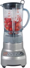Perfect Blender Pro Typ 824