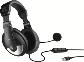 SL-8776-BK-01 THEBE Stereo Headset - USB