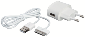 Home Charger 30 pin
