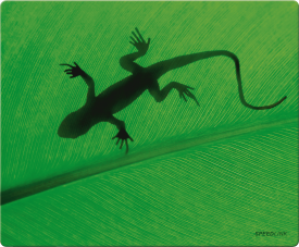 SILK Mousepad, Gecko