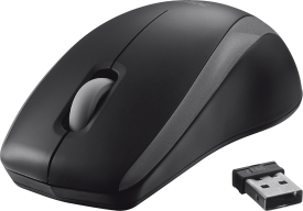Carve Wireless Mouse