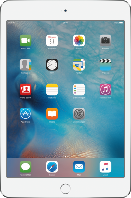 iPad mini 4 Wi-Fi 128GB_0